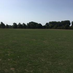 Playing Field 3